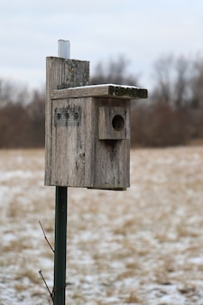 Closeup shot of a wooden bird nesting box