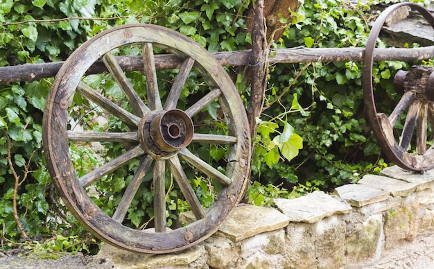 Closeup shot of wooden wheels on a stone border in front of the green plants