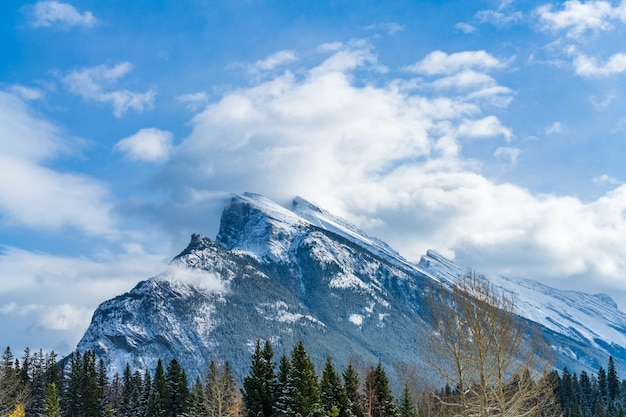 Closeup snowcovered mount rundle with snowy forest banff national park beautiful landscape in winter