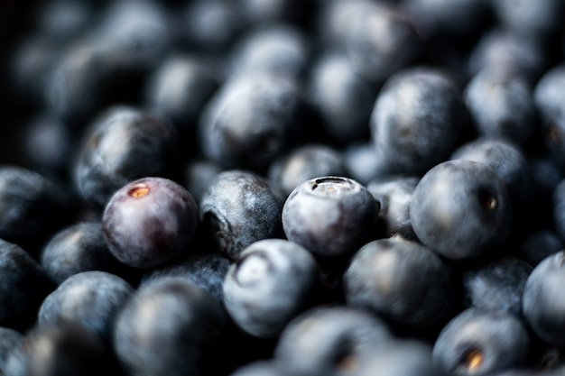 Closeup soft focus shot of tasty billberries
