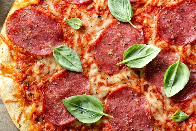 Closeup of tasty appetizing salami pizza with cheese and spices.