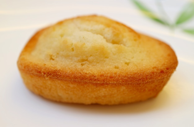 Closeup a tasty french almond petit-four cake called financier served on white plate