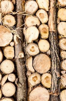 積み重ねられた丸太と切りたての木のクローズアップテクスチャ