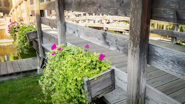 Closeup toned image of beautiful flowers growing in pots on old wooden bridge over water canal in european town