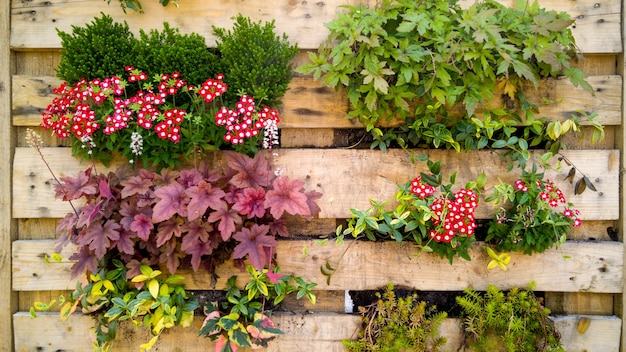 Closeup toned image of flowers, grass and bushesh growing in small pots on decorative vertical wooden wall on building face.copy space. place for your text. natural background