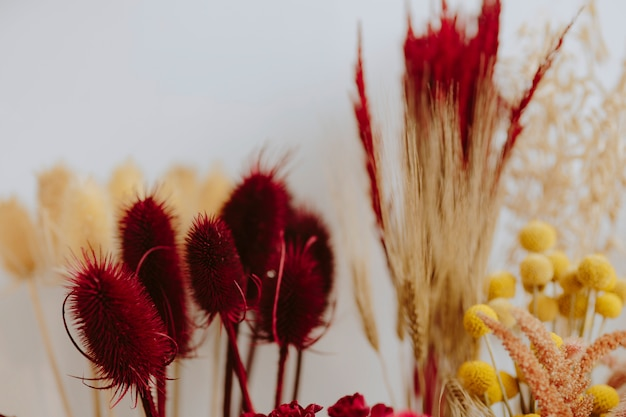 Closeup of various dried red and yellow flowers