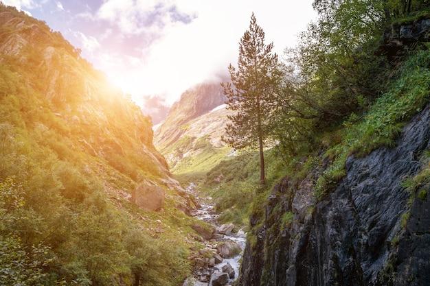 Крупным планом вид горы сцены в национальном парке домбай, кавказ, россия, европа. летний пейзаж, солнечная погода, драматическое голубое небо и солнечный день