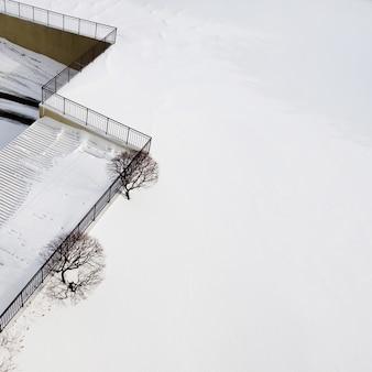 두 개의 나무와 크리스탈 하얀 눈이있는 매혹적인 겨울 풍경의 근접 촬영보기