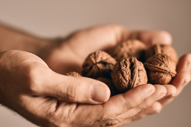 Крупным планом вид лица, занимающего вкусные грецкие орехи