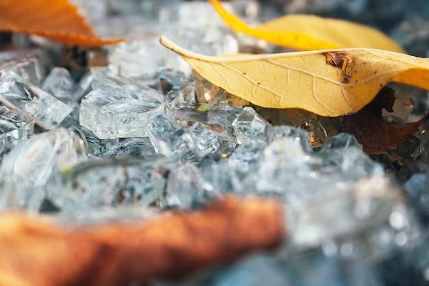 乾燥した葉の選択的なフォーカスマクロの破片の間で粉々になったガラスの破片のクローズアップビュー