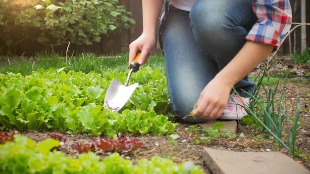 シャベルまたはスペードと庭で働く若い女性のクローズアップビュー。
