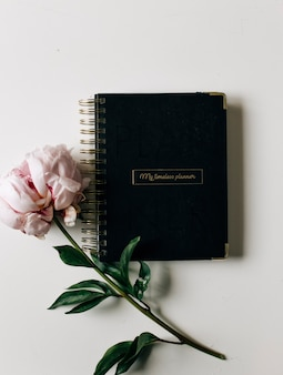 Closeup view of pink peony flower and black notebook on light background