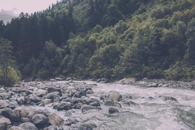Сцена реки крупным планом в лесу, национальный парк домбай, кавказ, россия, европа. летний пейзаж, солнечная погода и солнечный день