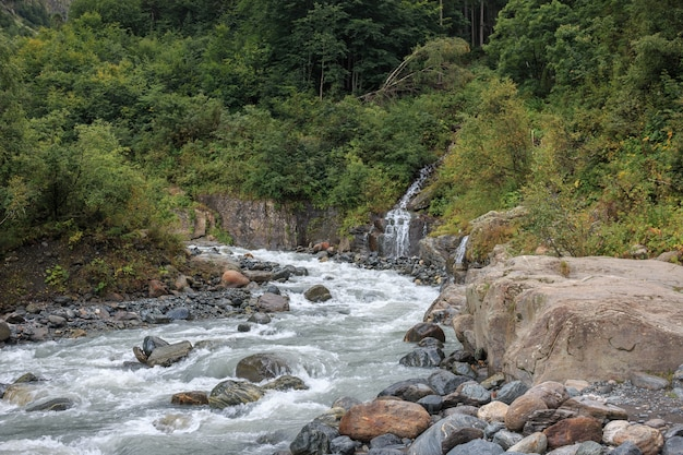 Closeup view river scenes in forest, national park dombai, caucasus, russia, europe. summer landscape, sunshine weather, dramatic blue sky and sunny day