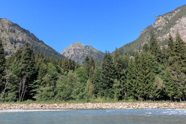Closeup view river scenes in mountains of national park dombai, caucasus, russia, europe. summer landscape, sunshine weather, dramatic blue sky and sunny day
