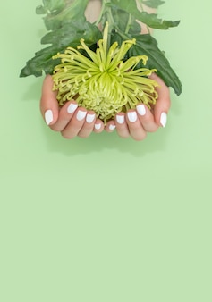 Closeup view of woman with flower on green background. spa treatment