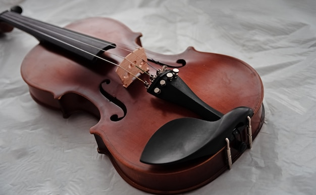 Closeup the violin front side