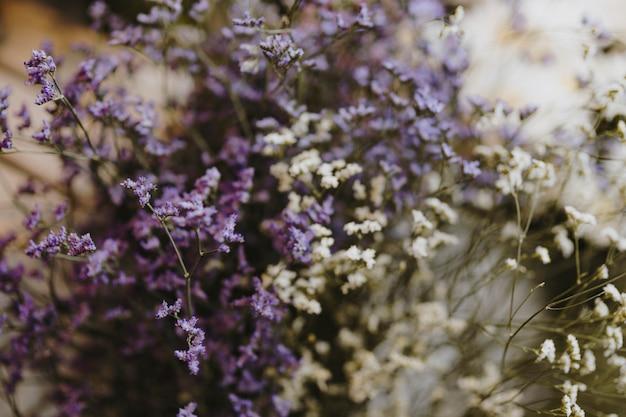 Primo piano dei fiori di caspia bianchi e viola