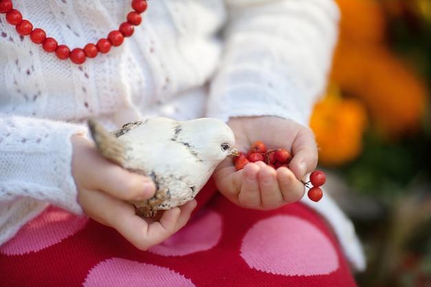 Руки маленького ребенка крупного плана маленькие держа творческую керамическую птицу ручной работы черно-белую. маленькая девочка кормит вашу керамическую птицу ягодами рябины. уникальный подарок другу, друзьям или семье