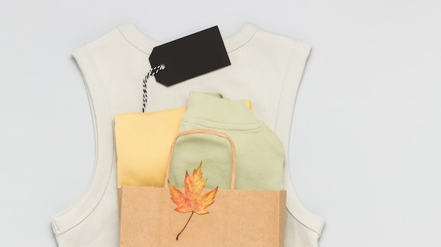 Clothes in the shopping paper bag with blank price tag