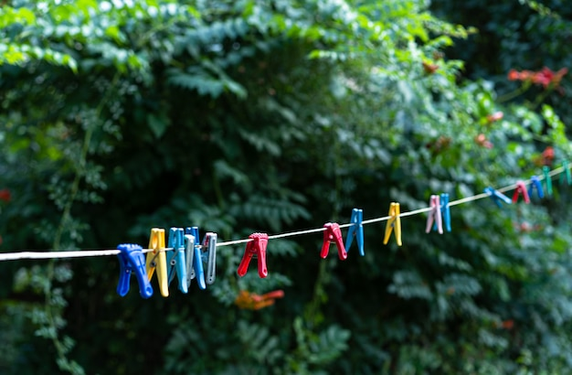 Clothesline with clothespins for drying clothes