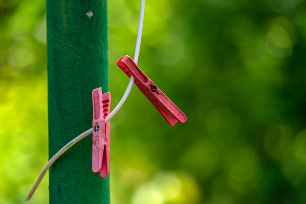 Clothespins on blurry green background