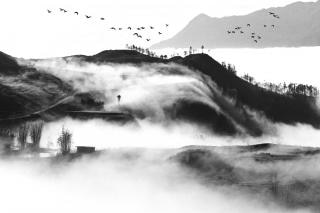 Nuvola di flusso