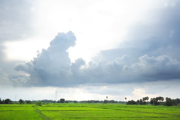 Cloud strom over green field