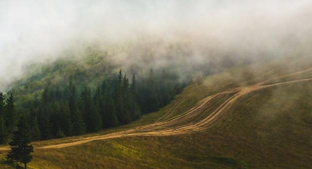 雲が山の頂上を覆い、山の中の未舗装の道路_