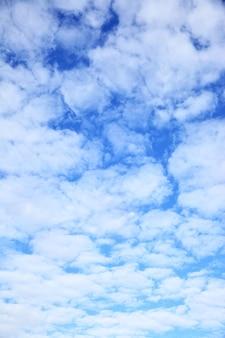 구름 - 배경으로 사용할 수 있음(세로)