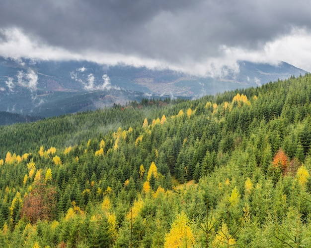 Clouds over the mountains with the autumn forest