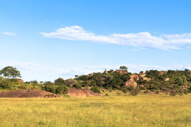 Облака над саванной. желтое поле. серенгети, танзания