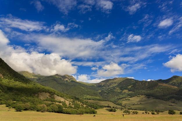 木々が生い茂るロッキー山脈の頂上に浮かぶ雲。ロシアのコーカサスで撮影。