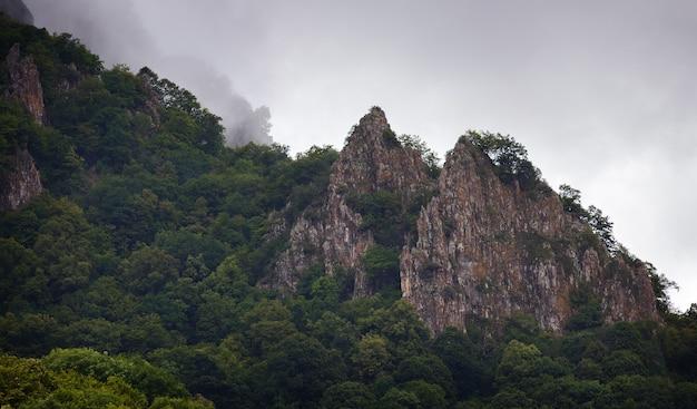 木々が生い茂る岩山の頂上に雲がかかっています。