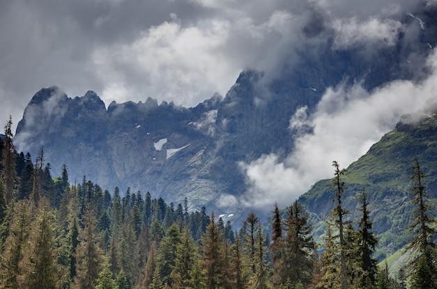木々が生い茂るロッキー山脈の頂上に浮かぶ雲