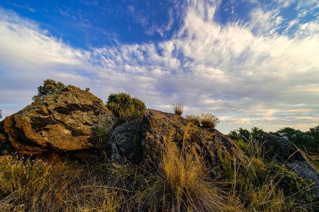 Cloudscape над скалами и растениями в поле.