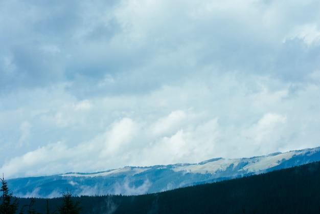森林自然公園とcloudscapeの美しい山の風景