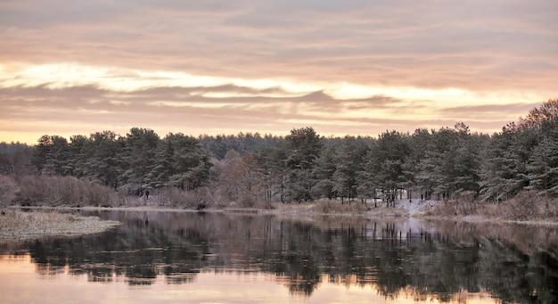 曇りの秋の夜明け。秋の川で最初の雪。川岸のモミの木。