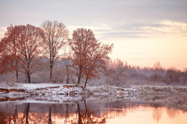 曇りの秋の夜明け。秋の川で最初の雪。川岸のオークス。