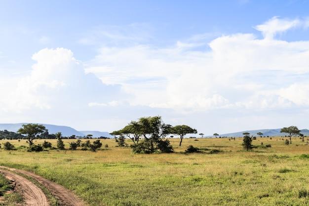 Облачный пейзаж в серенгети. танзания, африка