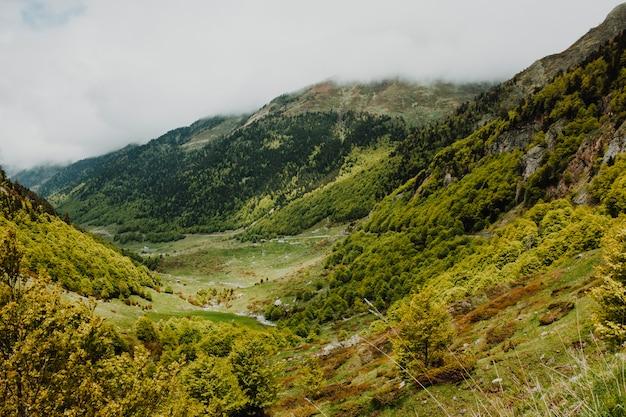 Cloudy rocky landscape with vegetation
