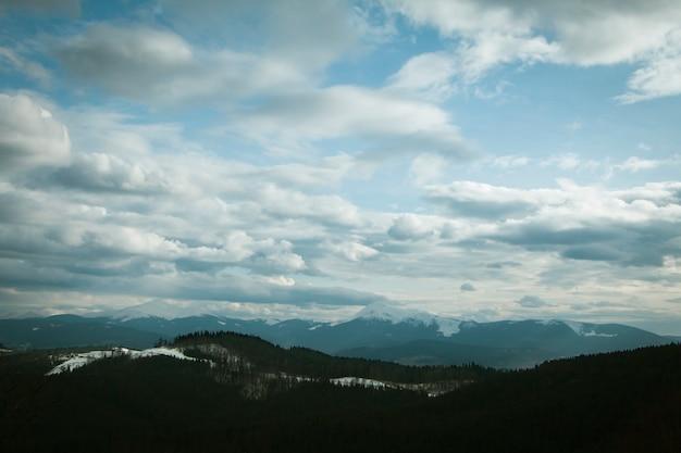 雪に覆われた森と山の上の曇り空
