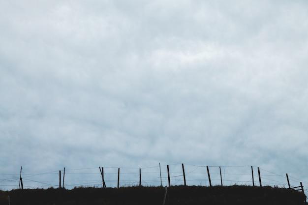木製のフェンスを背景に曇り空