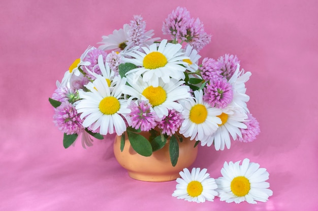 Clover and chamomile bouquet in a vase on a light background . summer bouquet of garden and field flowers. still life  on the pink background.