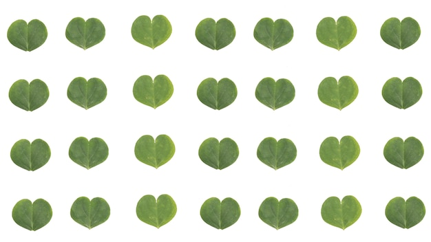 Clover leave pattern heart shape