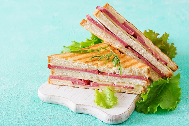Club sandwich - panini with ham and cheese. picnic food.