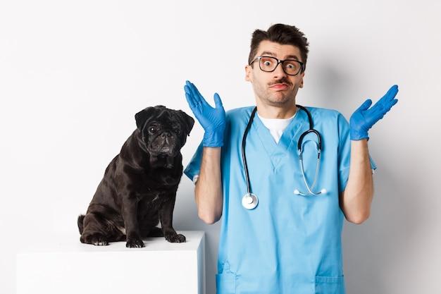 Бестолковый врач-ветеринар в скрабах пожимает плечами, смущенно глядя в камеру, пока собака сидит на столе для осмотра и ждет осмотра, белый фон.