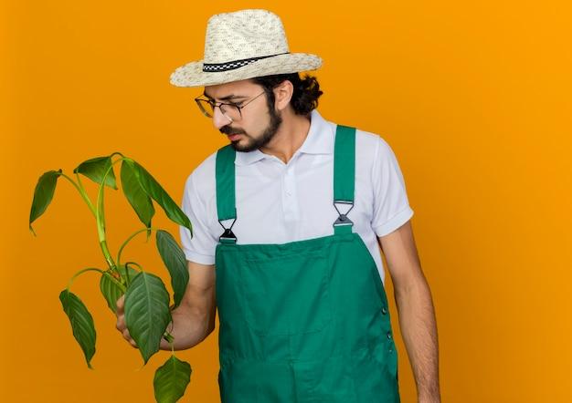 ガーデニング帽子をかぶった光学メガネの無知な男性の庭師は、植物を保持し、見ています