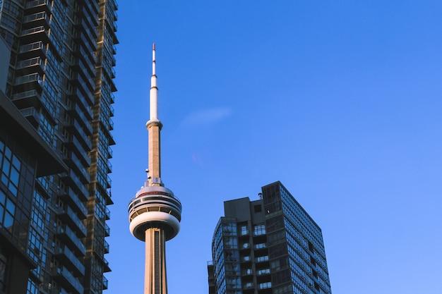 Cn tower в торонто канада, окруженная зданиями