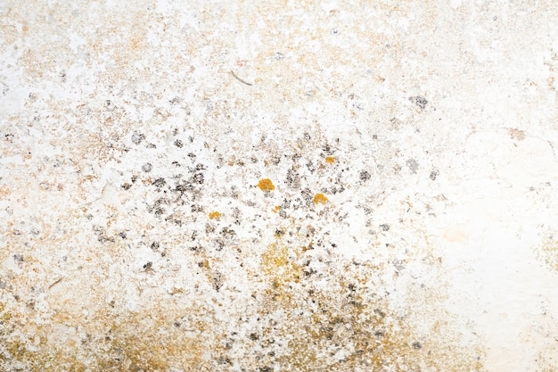 Coarse concrete surface with stains